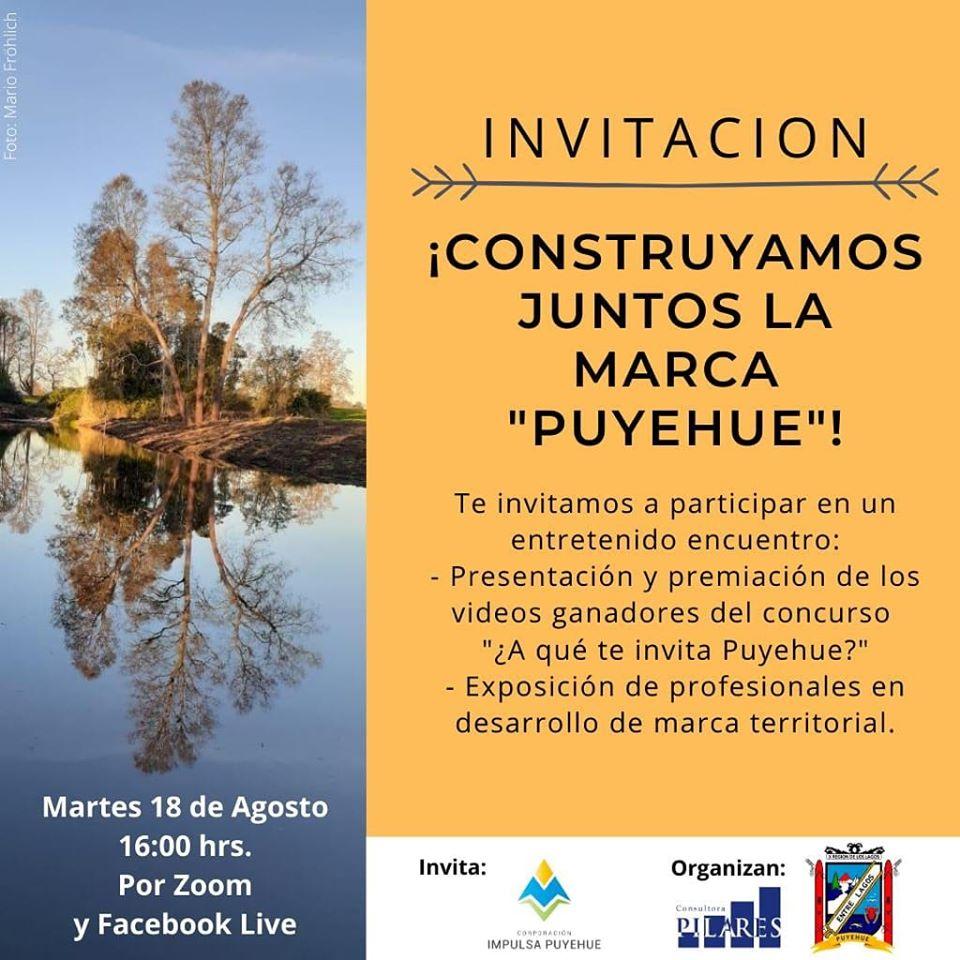 CONSTRUYAMOS JUNTOS LA MARCA PUYEHUE CHILE